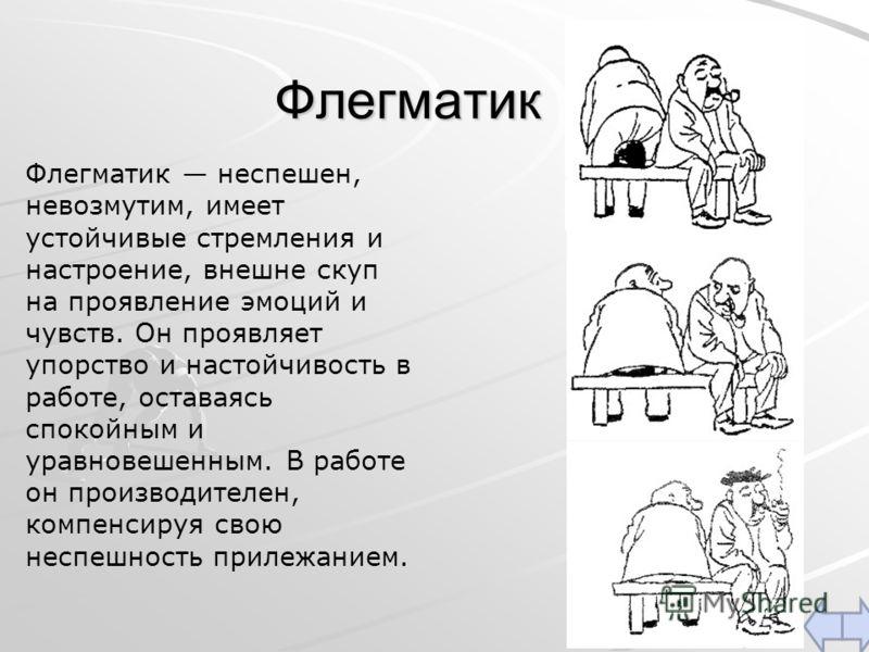 Кто такой флегматик — характеристика, темперамент, описание личности, черты характера, известные люди, профессии