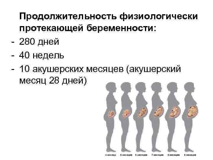Беременность: признаки, характер течения и обследование