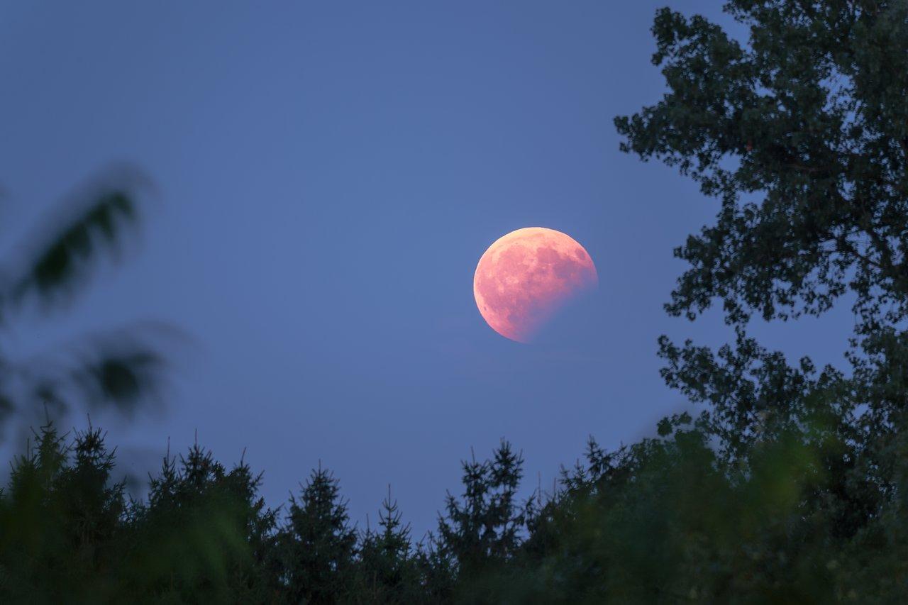 Солнечные и лунные затмения в 2020 году: даты и их влияние | astro7