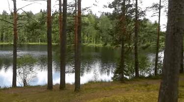 Руководство как определить глубину залегания грунтовых вод