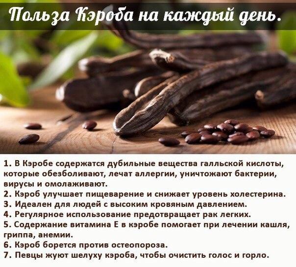 Кэроб (рожковое дерево): что это, как готовить, рецепты, гликемический индекс, польза и вред