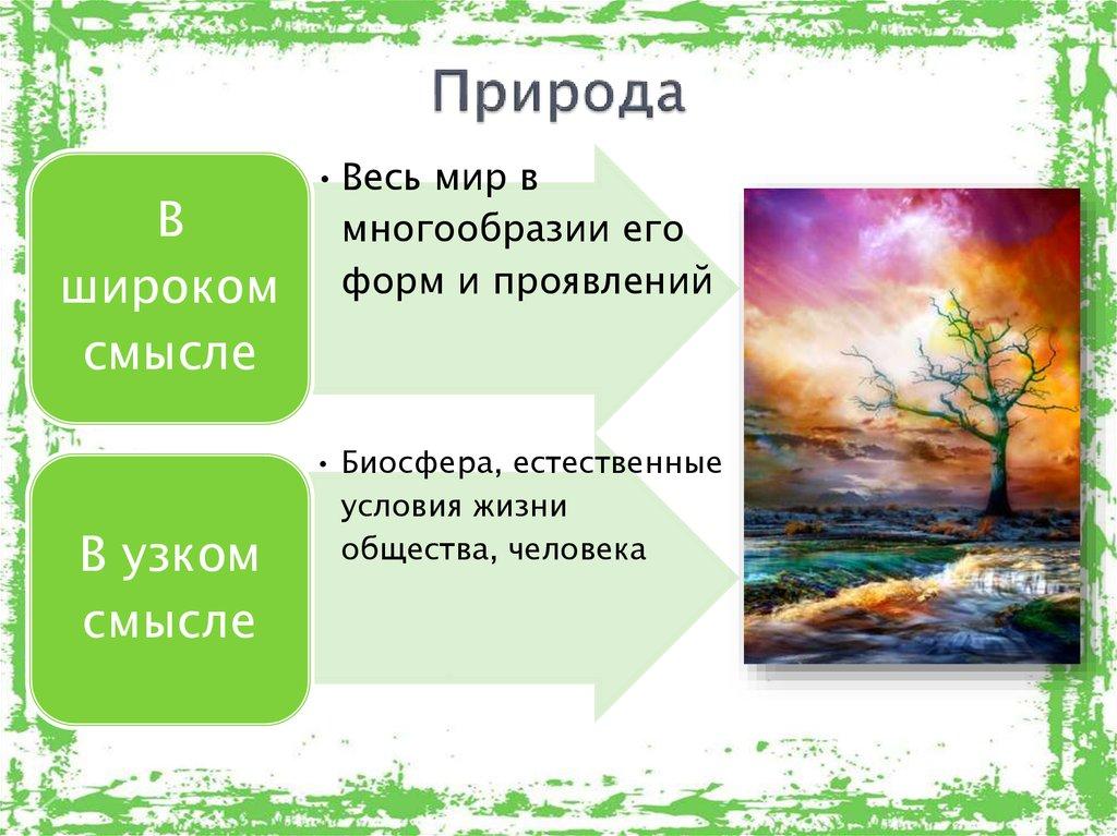 Что является объектом живой или неживой природы — океан, вода, воздух, действующий вулкан, солнце, луна, земля, планета, облака, радуга, почва, ручей, река, дерево, лист дерева, пень, цветок, трава, орех? похожие предметы живой и неживой природы: список