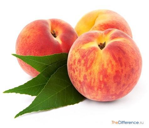 Чем полезны персики: 7 научно доказанных свойств - лайфхакер