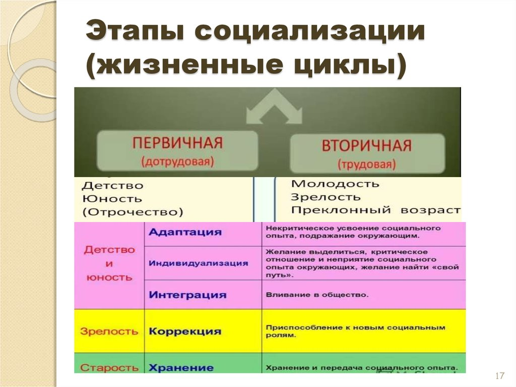Социализация: определение, виды, этапы и стадии социализации личности.