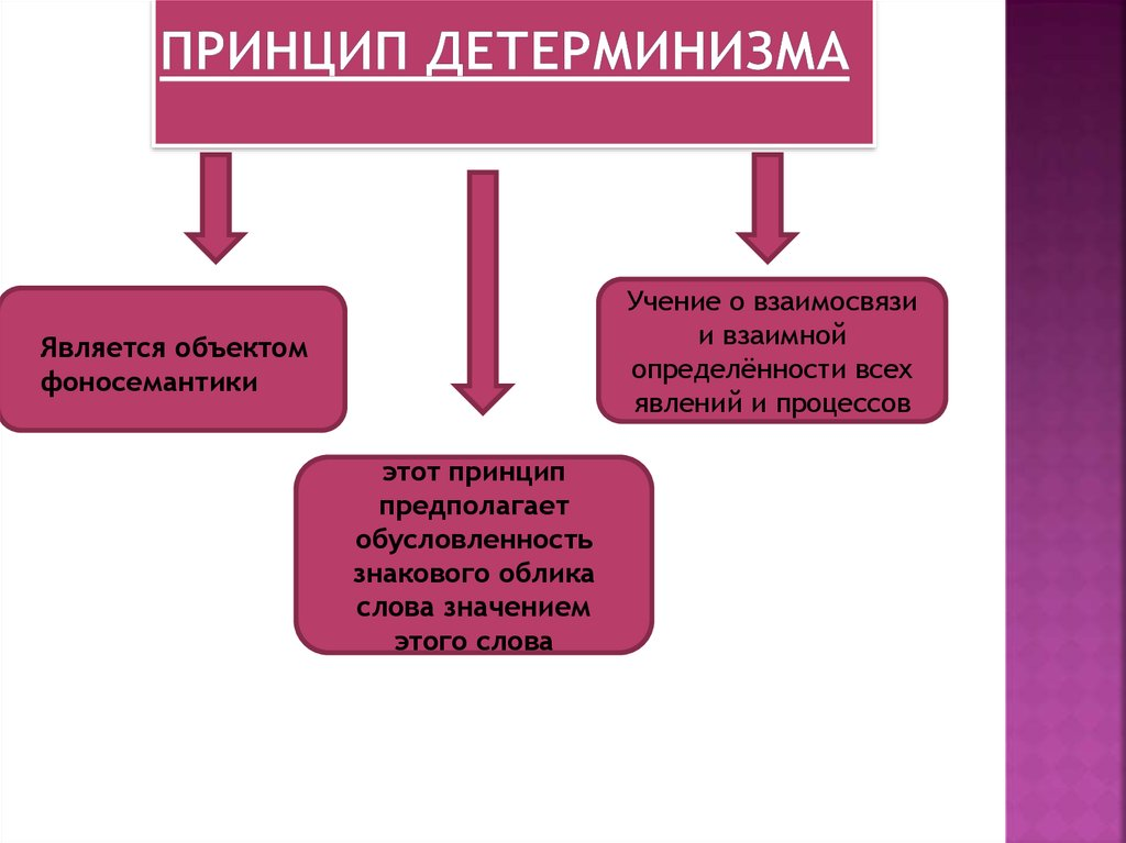 Что такое принцип и как его сформировать?
