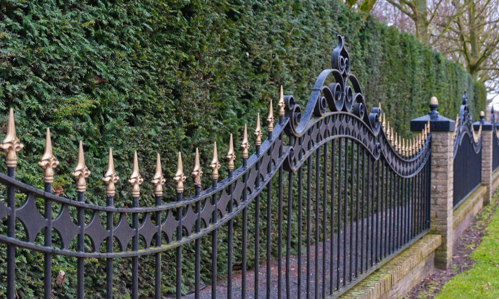Какой забор выбрать для загородного дома: виды ограждений, фото