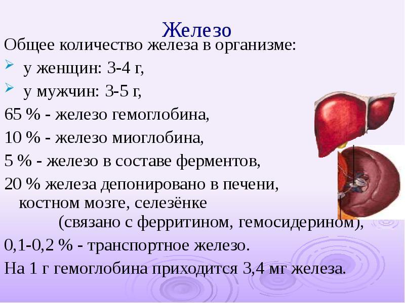Железо — общая характеристика элемента, химические свойства железа и его соединений » himege.ru