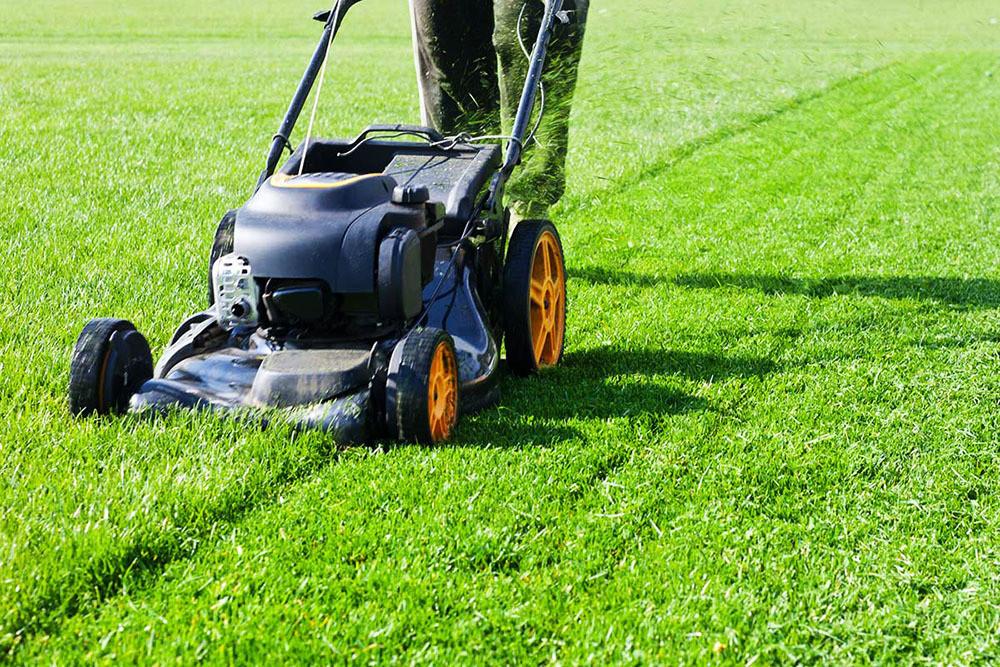 Внедрение функции мульчирования в газонокосилках: получаем максимум выгоды