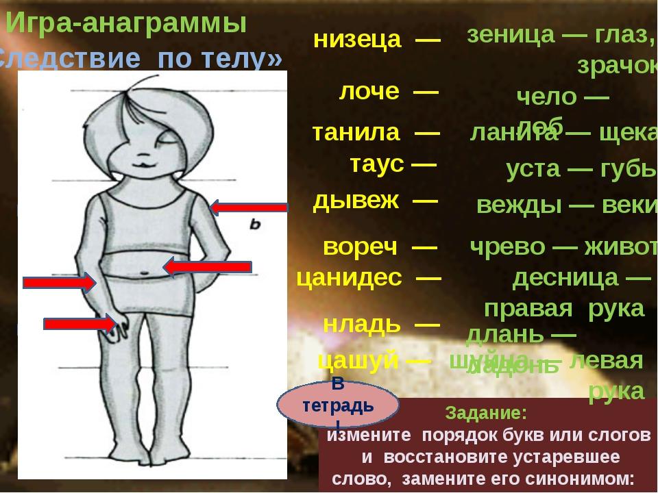 Что такое тело