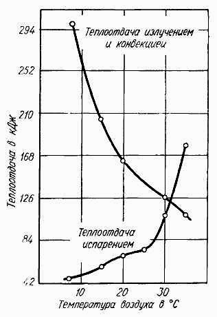 Как осуществляется терморегуляция в организме человека