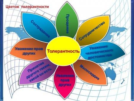 Толерантность  —  что это такое простыми словами   ktonanovenkogo.ru