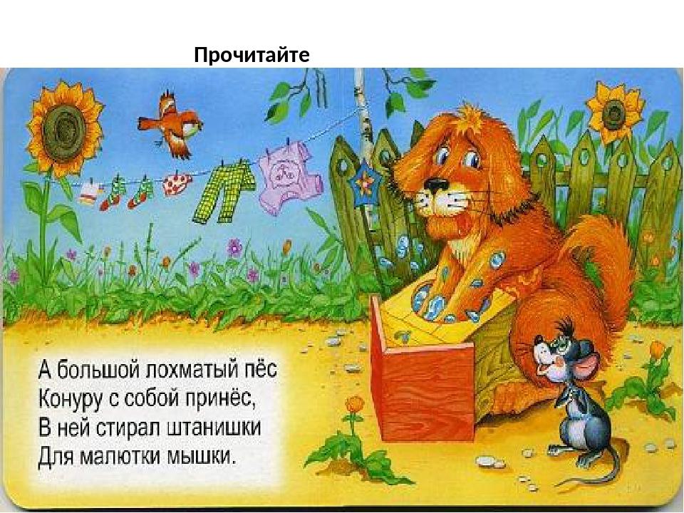 Разные детские небылицы для школьников 1, 2, 3, класса — библиотека для детей