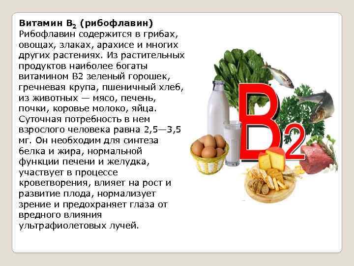 Витамин b2 (рибофлавин) – что это такое и для чего он нужен