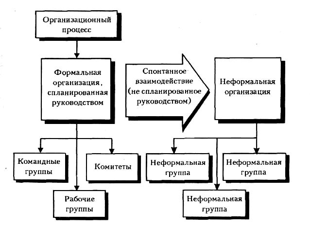 Неформальная и формальная социальная структура