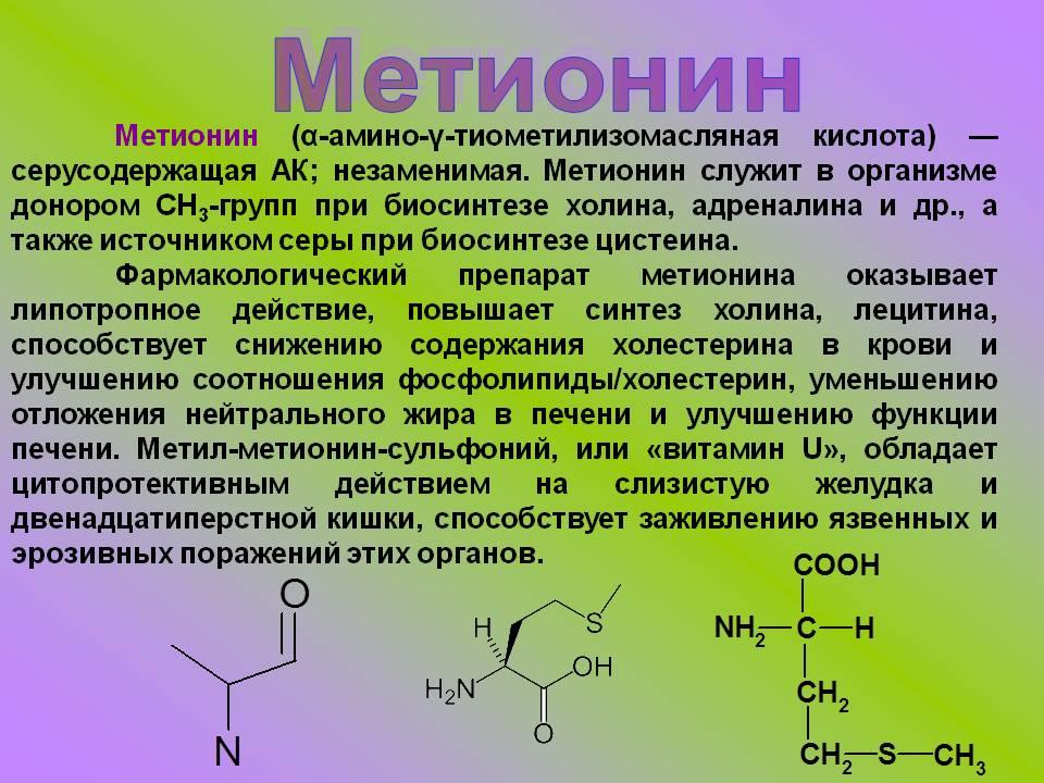 Аминокислоты: что это такое, полезные свойства и как их правильно принимать