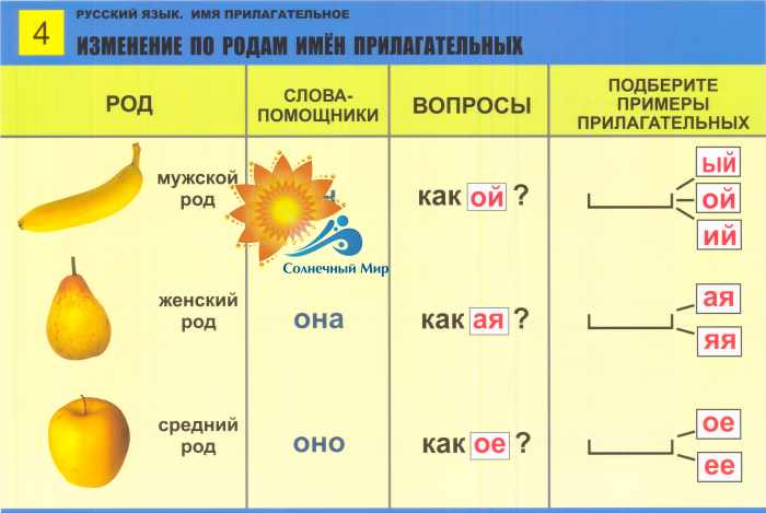 Имя прилагательное. русский язык. учебное пособие