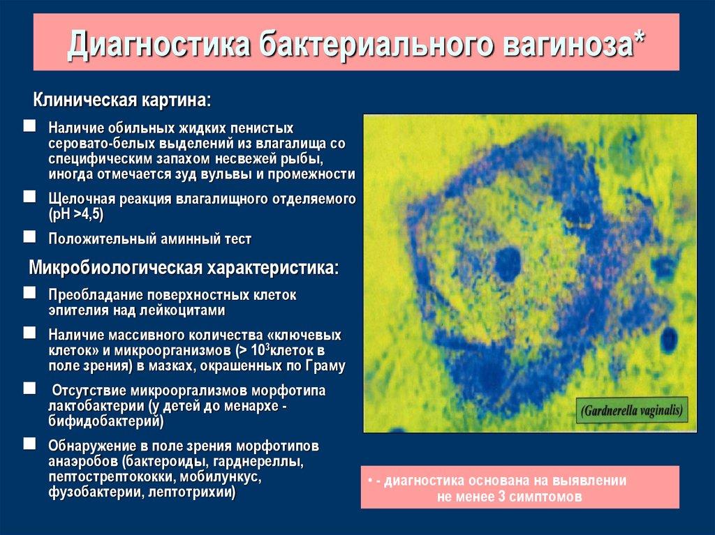 Бактериальный вагиноз: причины, симптомы, лечение – напоправку