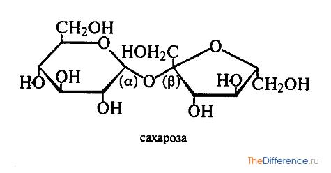Сахароза | химия онлайн