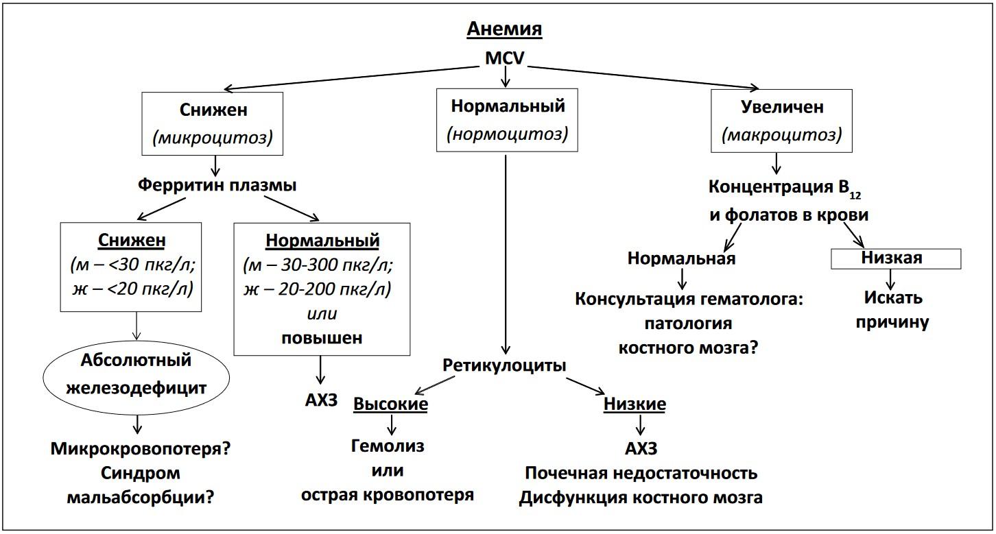 Анемия | энциклопедия кругосвет