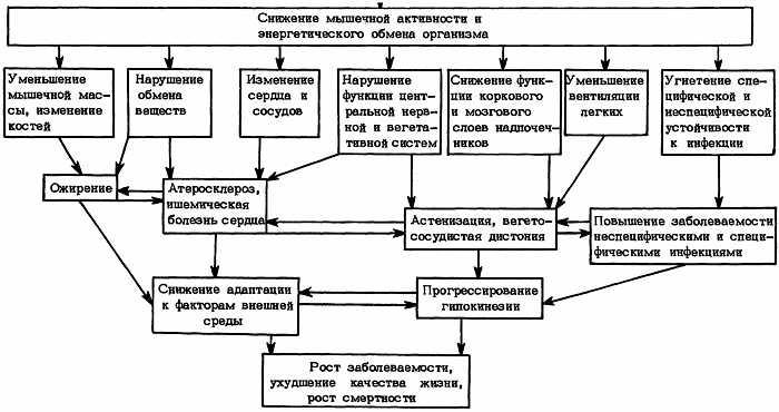 Гипокинезия - это... описание, последствия, профилактика, виды и лечение :: syl.ru