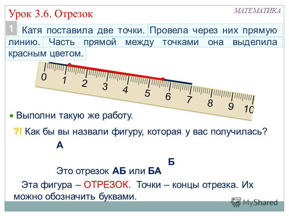 Точка, линия, прямая, луч, отрезок, ломанная | математика (геометрия)