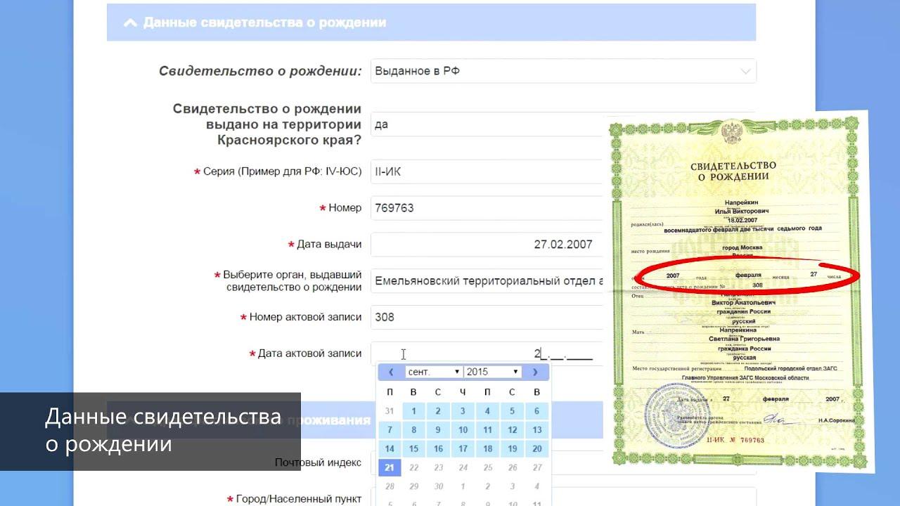 Нахождение номера актовой записи в свидетельстве о рождении ребенка в 2020 году