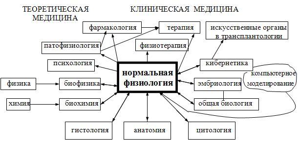 Физиология — википедия. что такое физиология