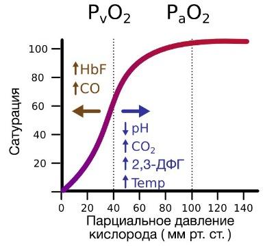 Частичное давление - partial pressure - qwe.wiki