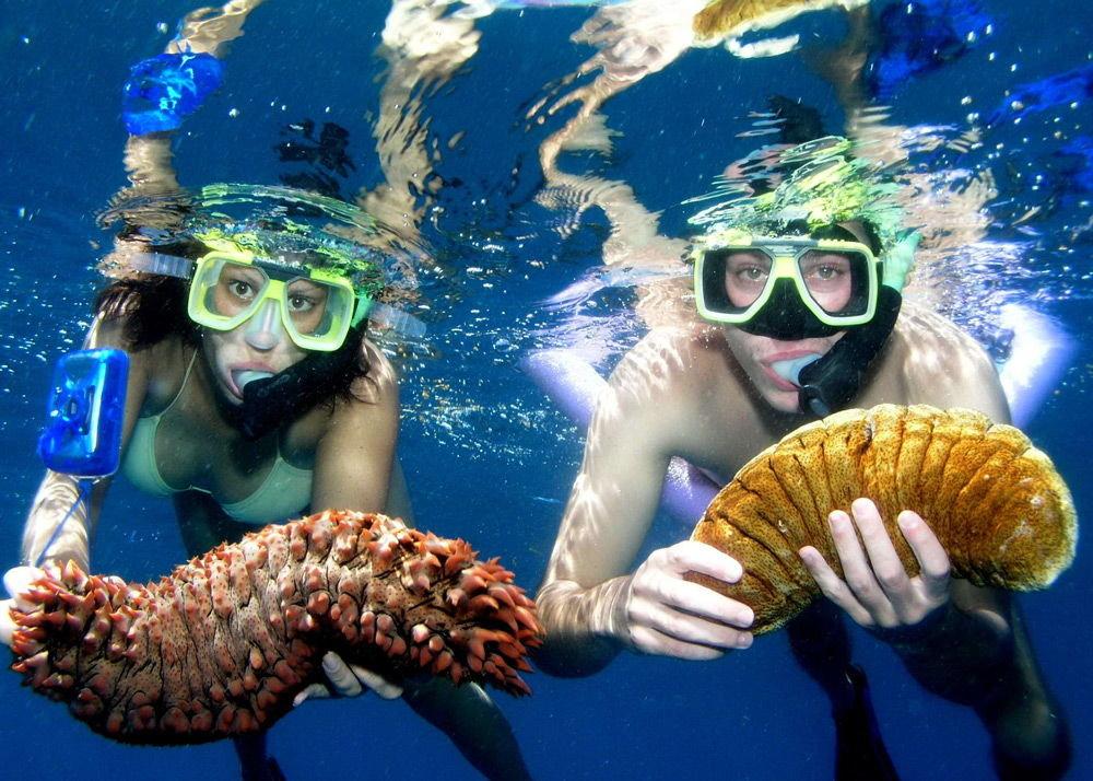 Подводное плавание в маске, или занятие снорклингом