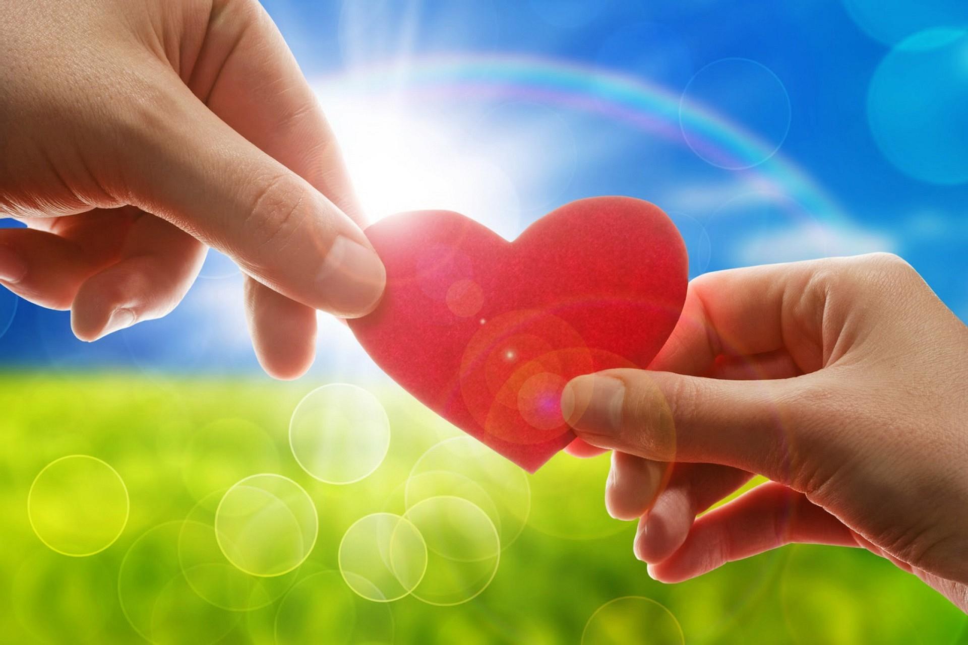 Что таит в себе термин любовь