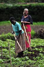 Натуральное хозяйство и товарное производство