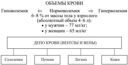 Кровь — википедия. что такое кровь