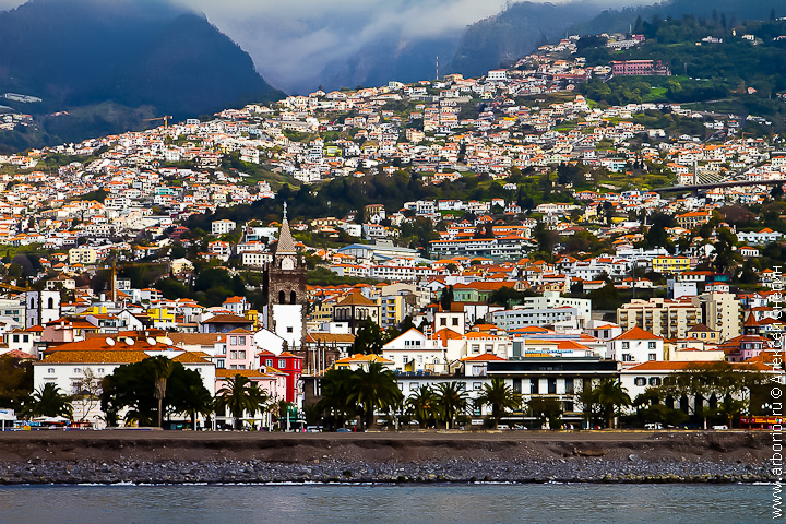 Мадейра (архипелаг) — википедия. что такое мадейра (архипелаг)