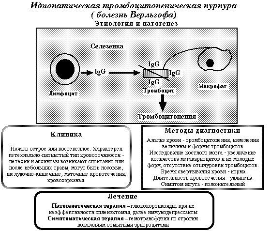 Тромбоцитемия: симптомы, лечение, продолжительность жизни