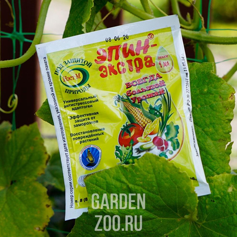 Эпин для комнатных растений: применение, меры предосторожности, отзывы о препарате