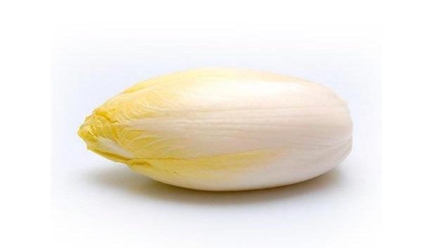 Цикорный салат эндивий: тонкости выращивания