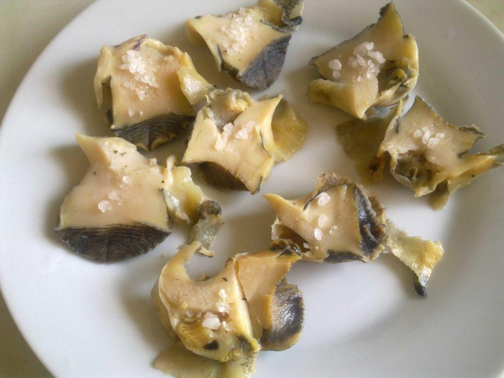 Рапаны — описание пользы и вреда с фото; приготовление мяса моллюска