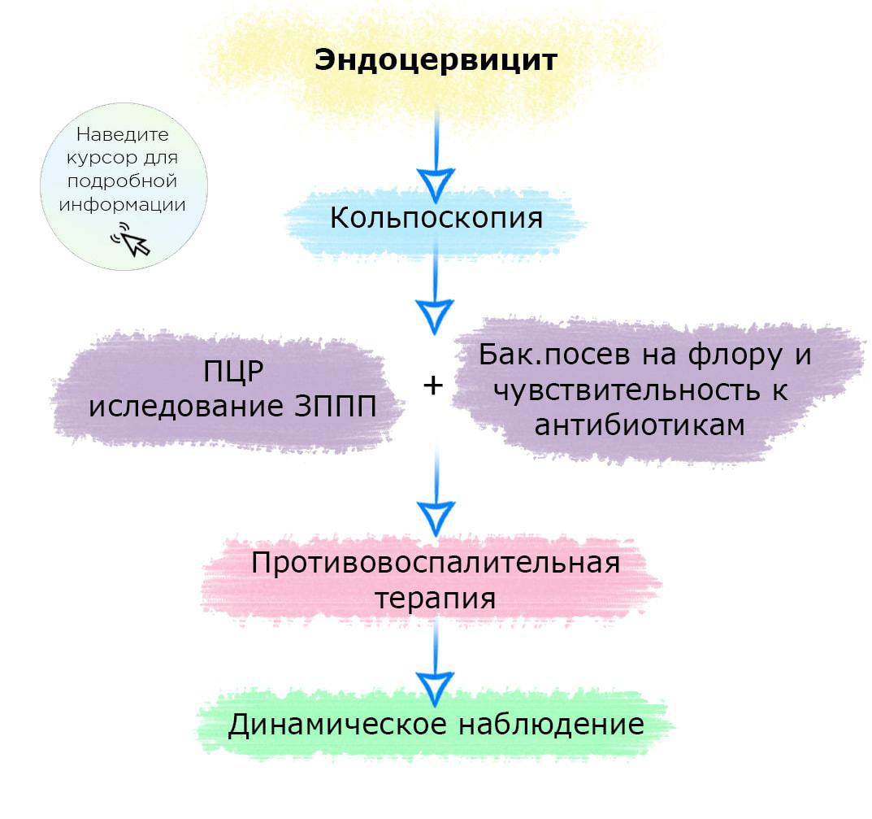 Цервицит, эндоцервицит, экзоцервицит — невеселая семейка женских заболеваний