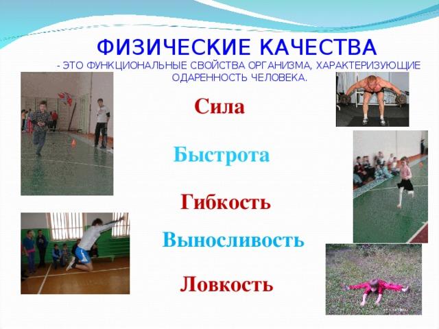 Физические качества — sportwiki энциклопедия