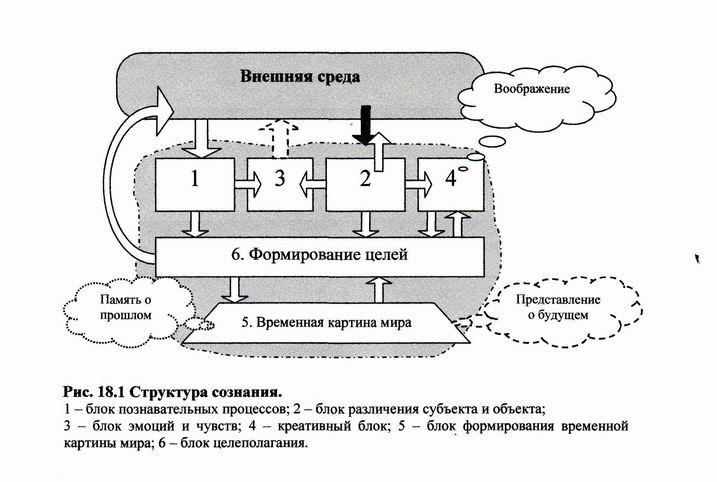 Сознание в философии, формы сознания человека