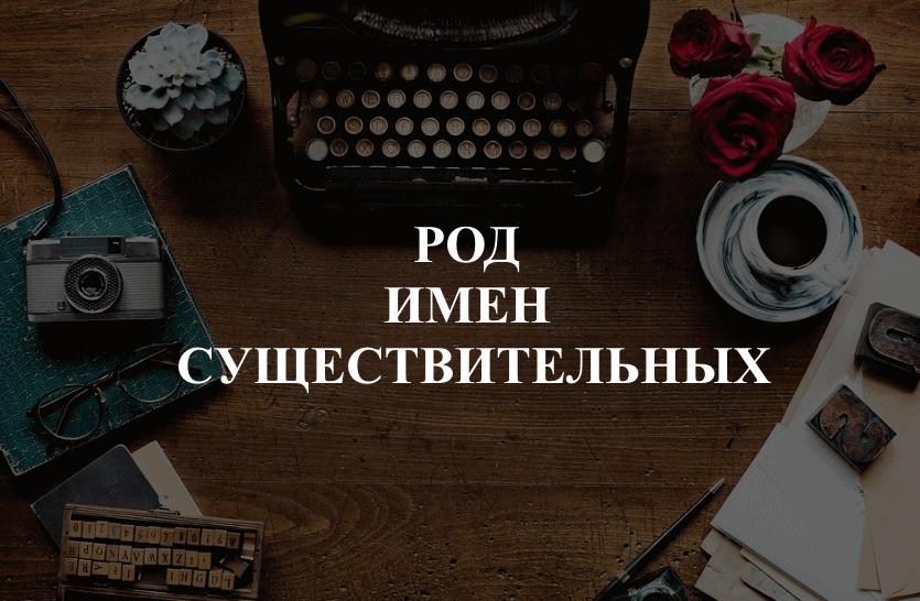 Средний род существительных в русском языке