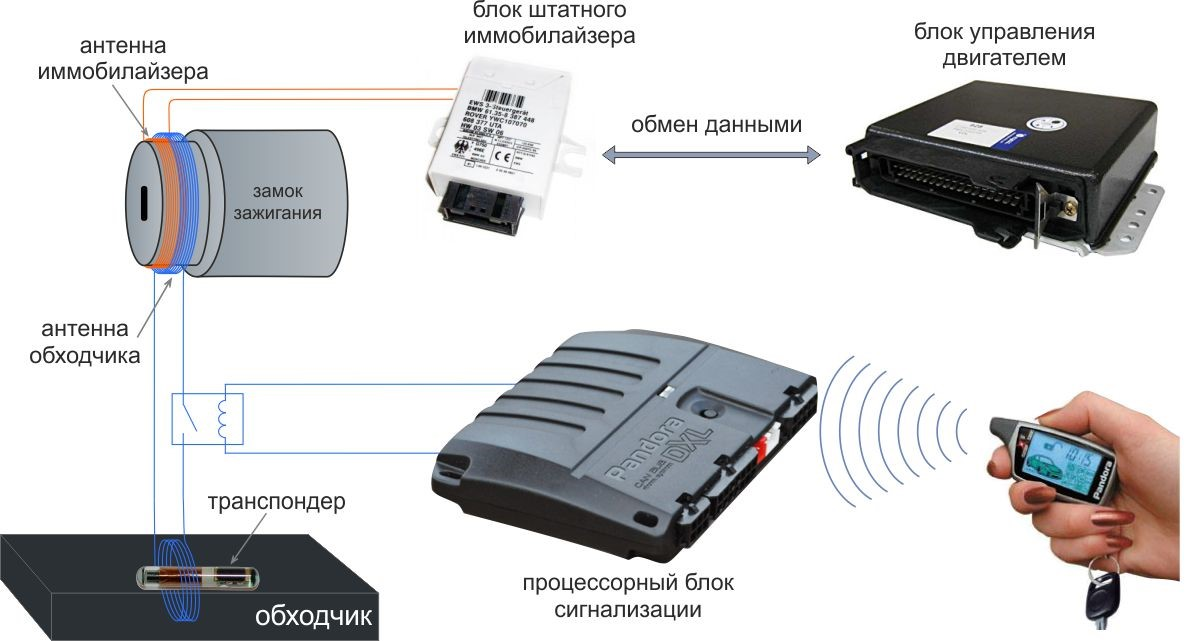 Что лучше сигнализация или иммобилайзер, чем отличается автосигнализация от штатного иммобилайзера