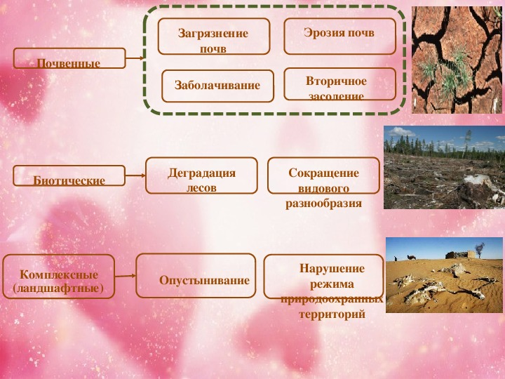 Что такое эрозия почвы — типы, причины, последствия и защита почв