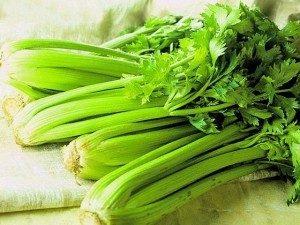 Сельдерей – как его едят: рецепты салатов и других блюд, полезные свойства для здоровья
