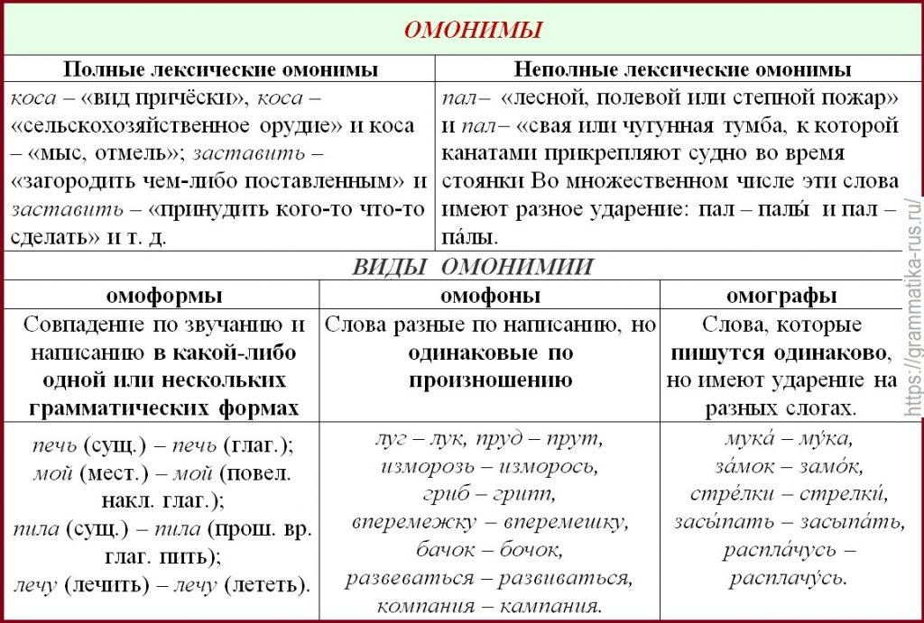 Что такое омонимы определение и примеры слов с несколькими значениями
