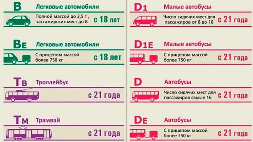 Категория с водительских прав: что обозначает, как открыть