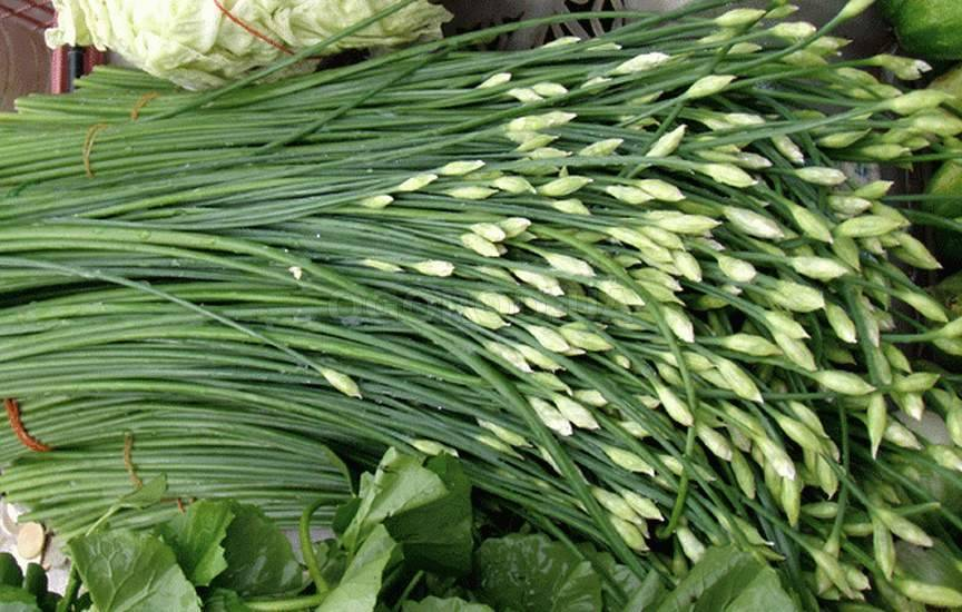 Лук джусай: фото душистого сорта, описание выращивания из семян и ухода в домашних условиях, характеристика вкусовых качеств и урожайности