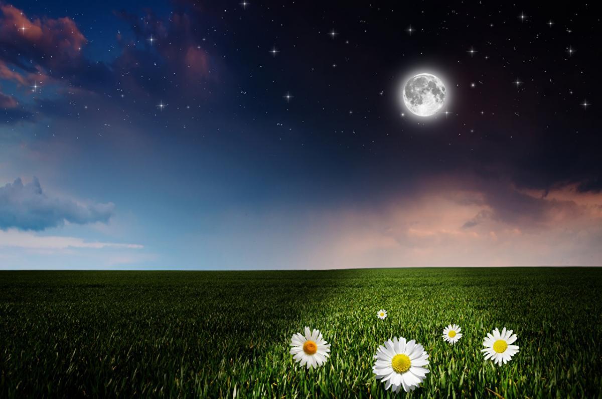 Ритуалы и обряды – в чем разница, особенности проведения