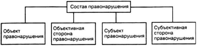 Административные правонарушения — что это такое, каковы их признаки, состав, виды, срок давности и примеры