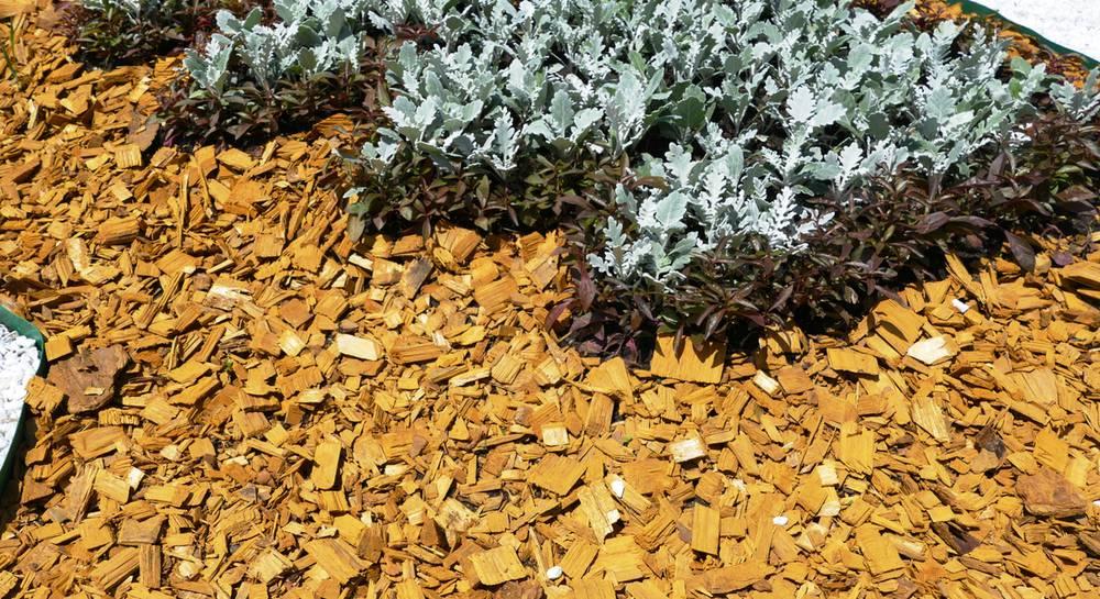 Мульчирование почвы в саду и огороде — польза и виды мульчи
